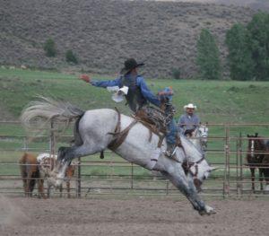 Saddle-Bronc-300x263.jpg