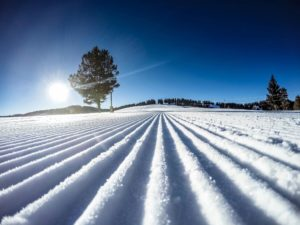 Sunny-Ski-Day-in-Vail-300x225.jpg